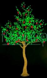 Фруктовое дерево Яблоня купить с доставкой в ваш город по выгодной цене