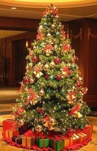 Комнатные елки Классик