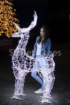 Новогодняя световая фигура 3D олень «Скакун», высота 2.4 метра