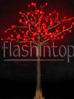 Цветущее дерево Капок купить с доставкой в ваш город по выгодной цене