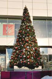 Новогодние уличные елки в Екатеринбурге