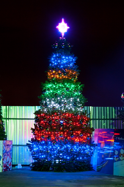 Конусная ель Светодинамическая Уральская 18 метров купить с доставкой в ваш город по выгодной цене