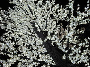Светодиодное дерево Rich LED Сакура 350, 24 В синее